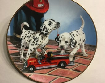 """Dalmatian Plate """"All Fired Up"""""""