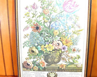Williamsburg Flower Of The Month Print, May, Framed Vintage Print