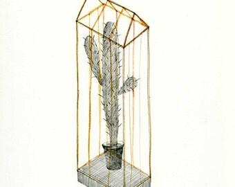 Cactus Fig. 001