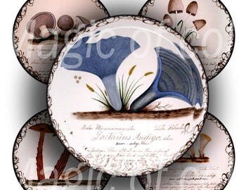 Vintage Mycology - 63  1 Inch Circle JPG images - Digital  Collage Sheet