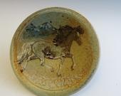 XSm Plate Tolting Pinto Icelandic Horse