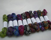 Mini Skeins - Lorna's Laces Shepherd Sock 5 g set of 10 (set 1)