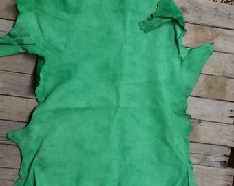 Medium Green Leather Hide - Mid Weight Calf - Lot No. 161022-Z