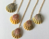 Sunrise Shell Necklace, FREE Shipping, Sunrise Shell Jewelry, Gold Fill, Hawaii, Hawaiian Jewelry, Simply Sparkle Designs (Quarter Size)