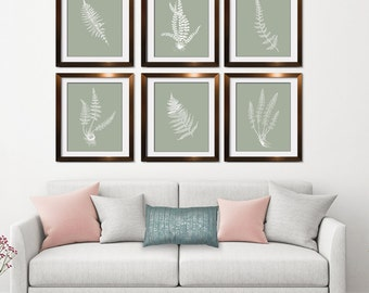 Ferns Garden Botanical Prints (Series J) Set of 6 - Art Prints (Featured in white on Desert Sage) AS featured in BHG