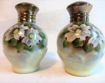 Vintage Hand Painted Porcelain Salt and Pepper Shakers, Cosmo Floral Salt and Pepper Set, Mid 70's Table Serving Set Salt Pepper