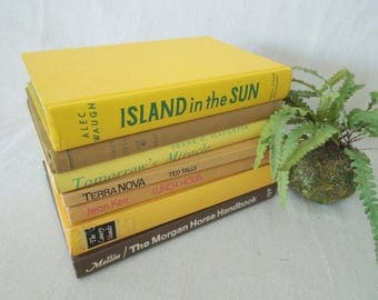 Yellow and Beige Book Collection - Books for Decor - Vintage Books by Color