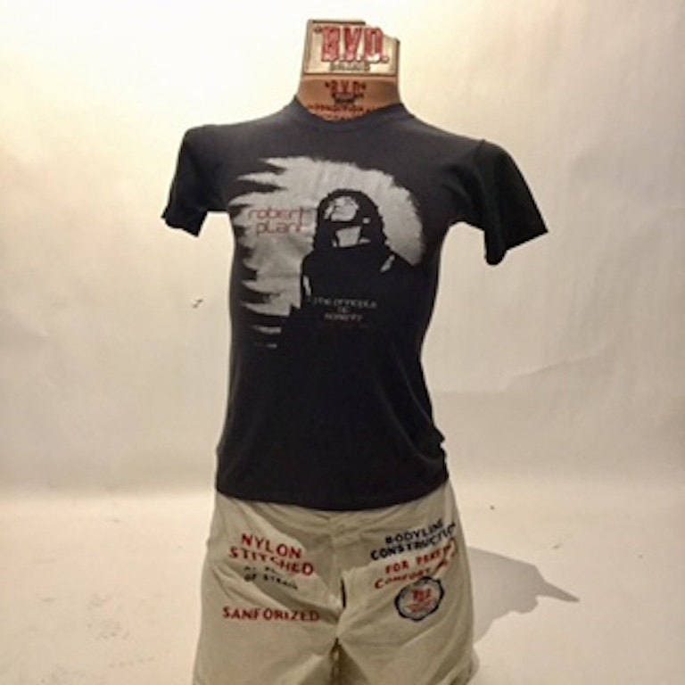 Vintage Robert Plant U.S.A. Tour 83' Tee (TS-4)