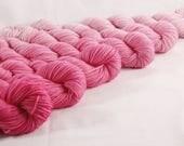 Custom Dye for Tina - 760 yard Hot Pink Ombre Cake