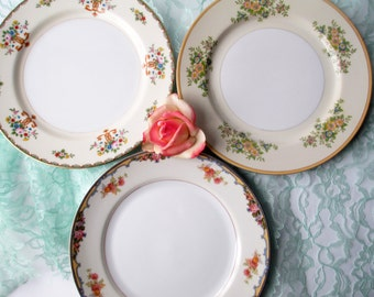 Mismatched Dinner Plates Vintage Floral China Meito Noritake Set of Three