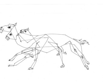 Camel Race, Middle East, Arabian Culture, Line Drawing