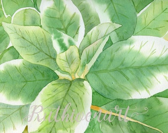 Variegated Leaves Watercolor Print