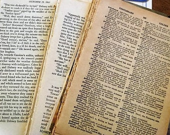 Vintage Dictionary & Novel Pages / 75 -80 Pieces Mixed Lot Vintage Dictionary, Novel Pages