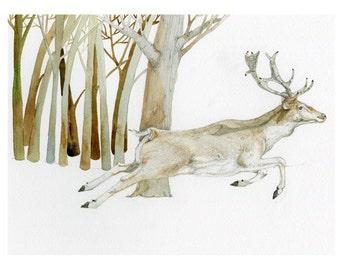 Deer running Fallow Deer in Wood 8x11 inch giclee print of Fallow Deer