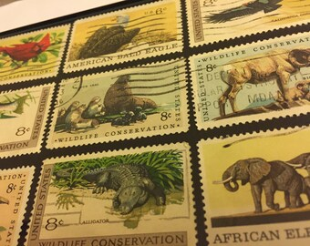 "Wildlife Conservation - Recycled Postage Stamp Framed Art 4""x6"", 4x6, alligator, african elephant, bald eagle, seal, ram, pelican, cardinal"
