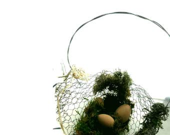 Egg Basket, Chicken Wire, Handle, Brown Eggs and Moss