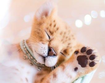 Lion cub Princess (MADE FOR ORDER)