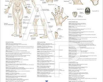 "Extraordinary Acupuncture Points Poster 18"" X 24"""