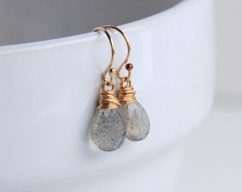 Labradorite Stone Earrings, 14k Gold Filled Wire Wrapped Jewelry