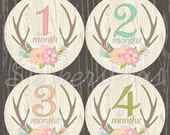 SALE Baby Month Stickers Monthly Stickers Baby Girl Stickers Baby Milestone Sticker Baby Girl Floral Woodland Deer Antler Antlers II Gift