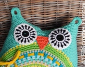 OWL CUSHION 'pool' by ATERGcrochet