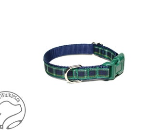 "NEW - Campbell Clan Tartan Small Dog Collar - Thin Dog Collar - 1/2"" (12mm) Wide - Blue Green Plaid - Choice of collar style and size"