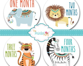 Monthly Baby Stickers - Baby Shower Gift and Photo Prop - Boy - Tribal - jungle - aztec - 309