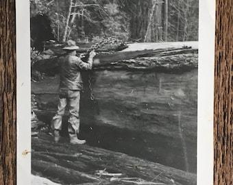Original Vintage Photograph The Logger