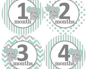 Baby Monthly Milestone Growth Stickers Grey Mint White Elephant Nursery Theme MS257 Baby Boy Girl Shower Gift Baby Photo Prop