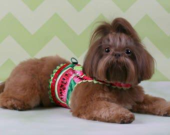 SAMPLE SALE:  Watermelon Slice Dog Harness