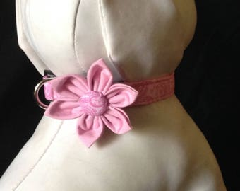 Dog Collar Flower Set - Pink Paisley - Size XS, S, M, L, XL