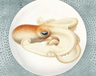 Octopus II, Velodona Octopus melamine plate