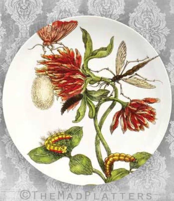 1600's botanical VI melamine dinnerware