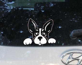 Peeking French Bulldog, Boston Terrier Car Decal, Animal Lover Gift, Dog Rescue, Love My Dog, Dog Sticker, Bumper Sticker
