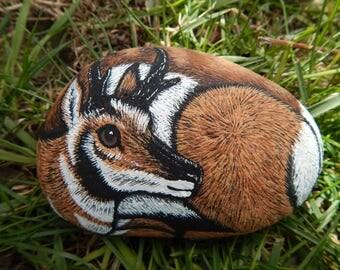 Pronghorn Antelope Painting, Pronghorn Antelope Painted Rock, Pronghorn Antelope Art