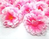 "2"" Hawaiian Carnation Heads (Pack of 24) - Pink White Edge - Artificial Flower, Silk Flower Heads"