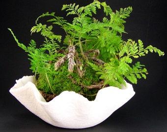 White Porcelain Bowl Planter, Hand-built Bonsai Pot, Translucent White Succulent Pot, Fluted Porcelain Kusamono, Kokedama Dish, 05-16-01