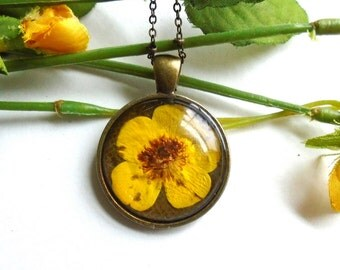 Real Pressed Flower Buttercup Wildflower Bronze Glass Pendant Necklace