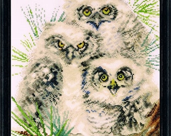 Cross Stitch Kit - Owl Trio
