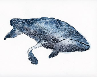 Print -Humpback Whale Watercolour print - Watercolour and ink illustration archival whale print