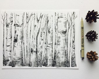 Aspen Tree Forest-Detailed Ink Drawing by MyImaginationInInk