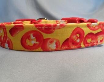 Red Hot Pepper Dog Collar