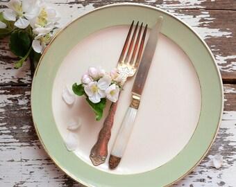 Vintage Villeroy & Boch Dinner Plates
