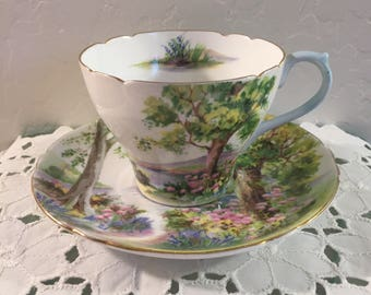 Shelley China Woodland Cup and Saucer
