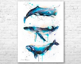 Sperm whale, Right whale,Humpback whale watercolor painting printby Slaveika Aladjova, art, animal, illustration, Sea art, sea life art,