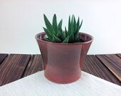 planter for succulents pl...