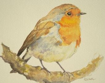 Robin PRINT: A4 Print of an Original Watercolour Painting