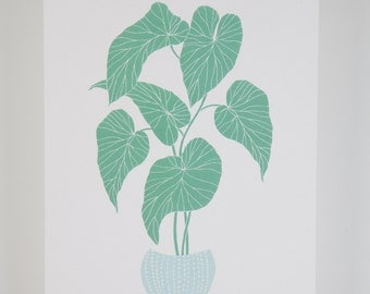 House plant illustration contemporary giclee digital print