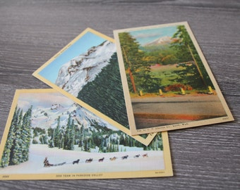 Vintage Mount Rainier National Park Linen Postcard Collection of 3