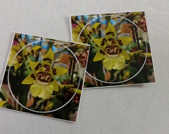 Yellow Orchid Sticker